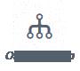 bot_org